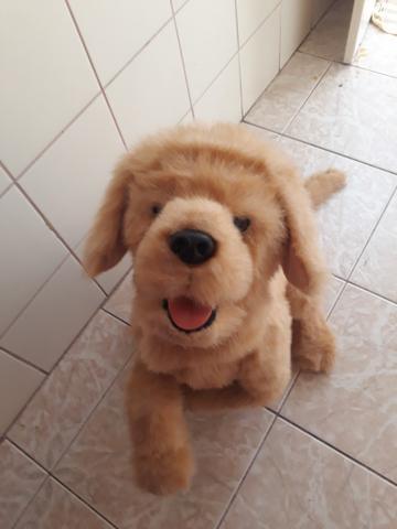 Cachorro furreal